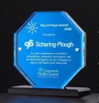 Octagon Series Acrylic Award Featuring a Blue Mirror Octagon Awards